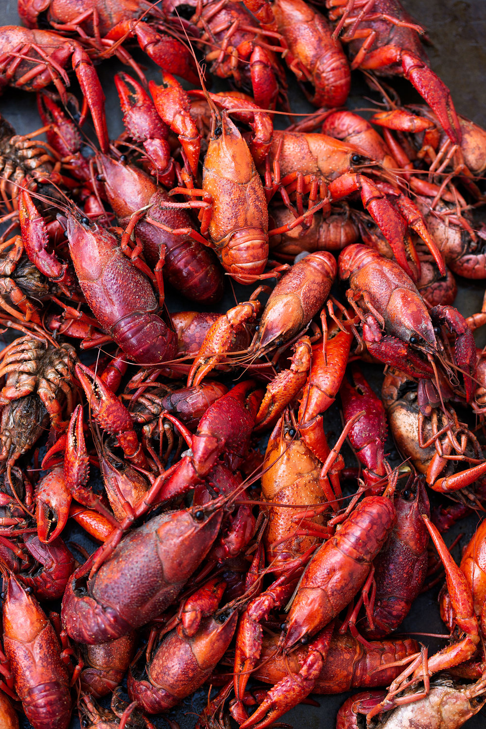 cooked crawfish