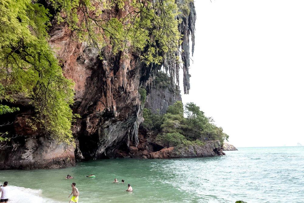 mangrove trees railay beach