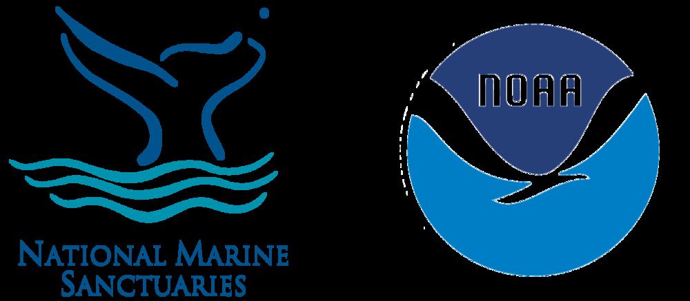 nat-marine.png