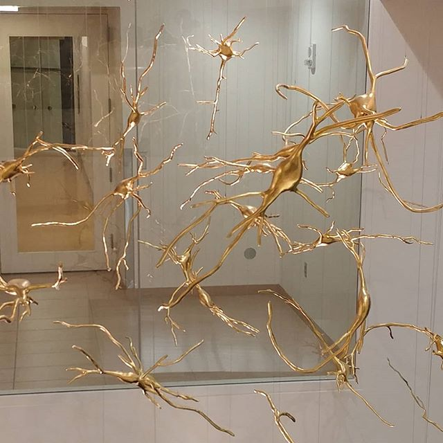 Dangling #neurons at #MIT! Spent the past few days at MIT for a site visit for work. #STPFLife #STEM4All #livelearnshare
