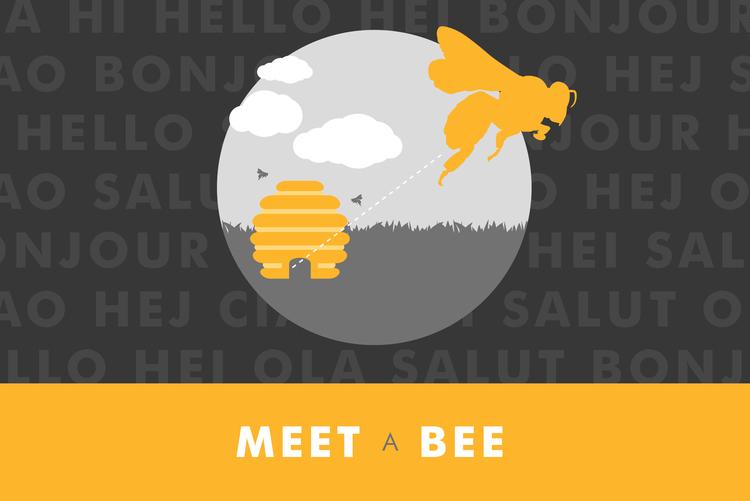 Meet a Bee.jpeg