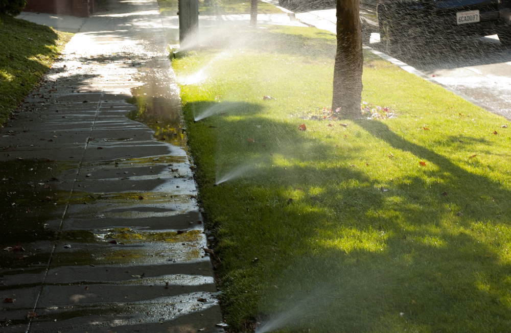 Madison_Runoff_Sprinklers2012 (1).jpg