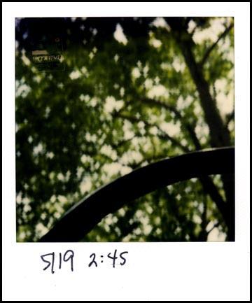 Driving59.jpg