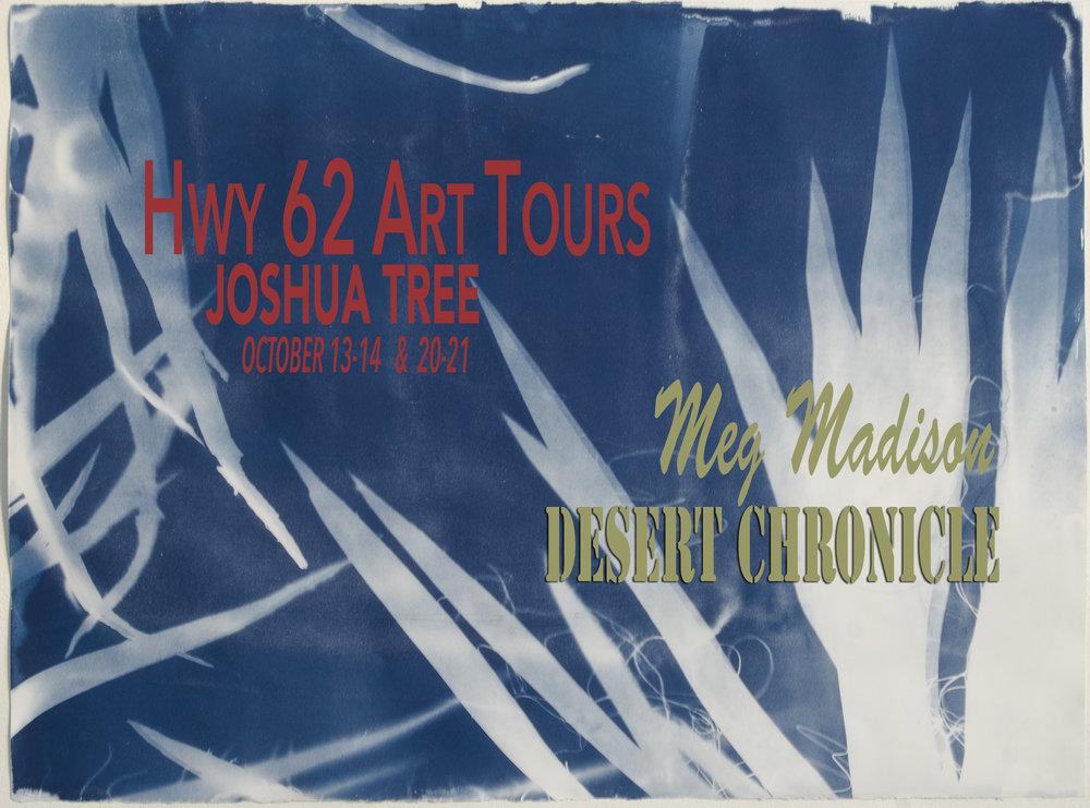 "Desert Chronicle , No. 182, Mojave Yucca , 22"" x 30"" 2017"