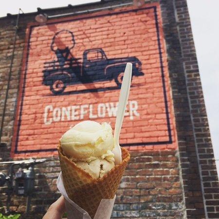 coneflower-creamery.jpg