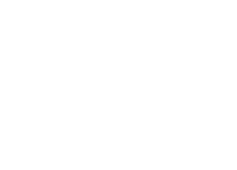 The Lowell Food & Wine Festival