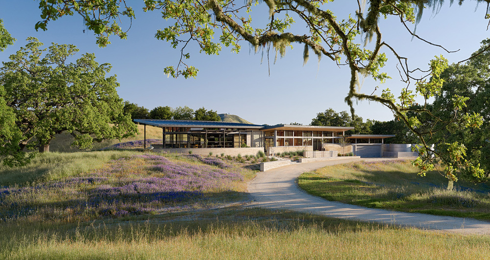 8bcf3766c4f9 Carmel Valley II   Embodying the owner s love for modern ranch house  architecture