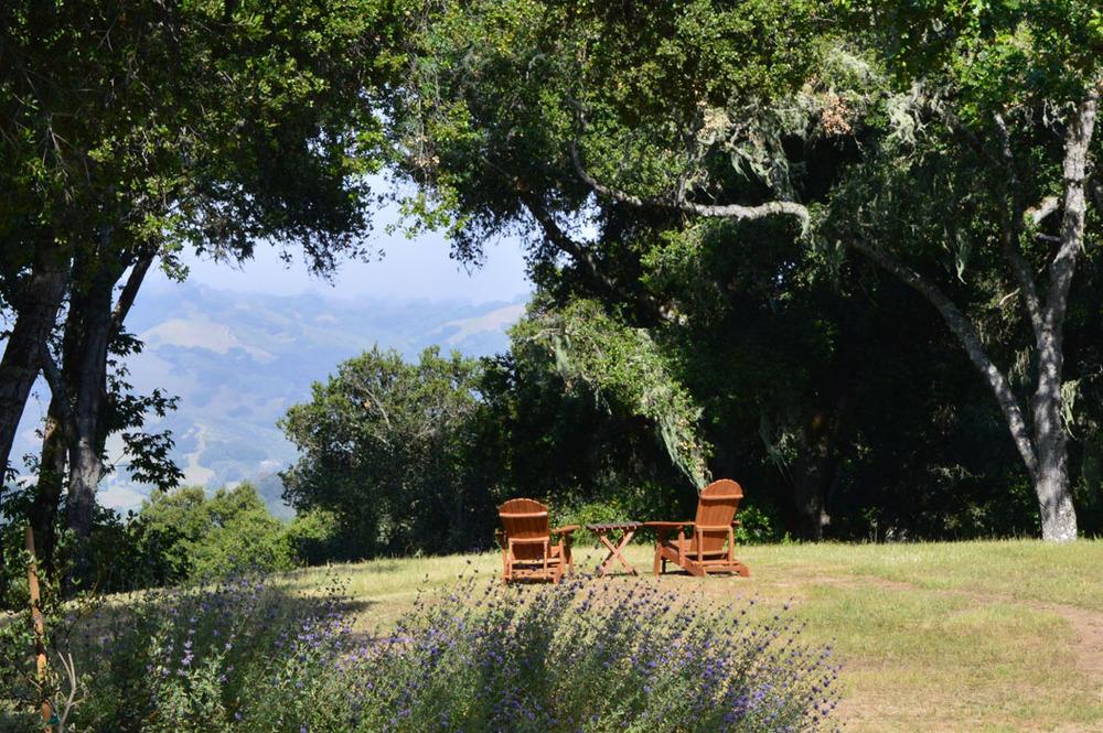 Carmel Valley Iv Joni L Janecki And Associates Landscape Architects