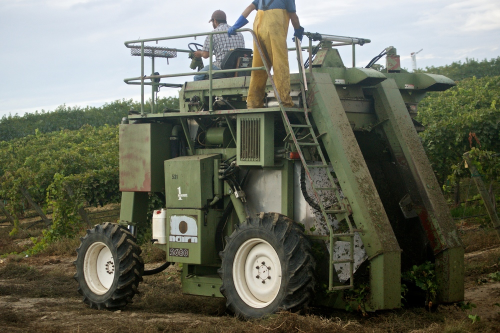 NaIRN Grape Harvester