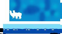 kentucky_alpaca_assoc_logo.png
