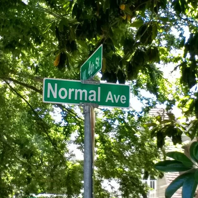 If you ever find yourself on this road for too long take a detour.  #normal