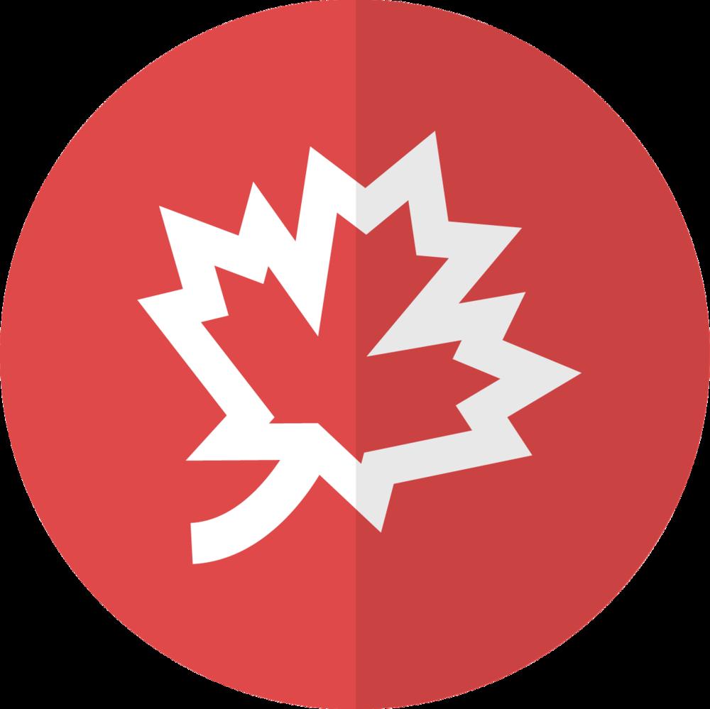 Fall Icon