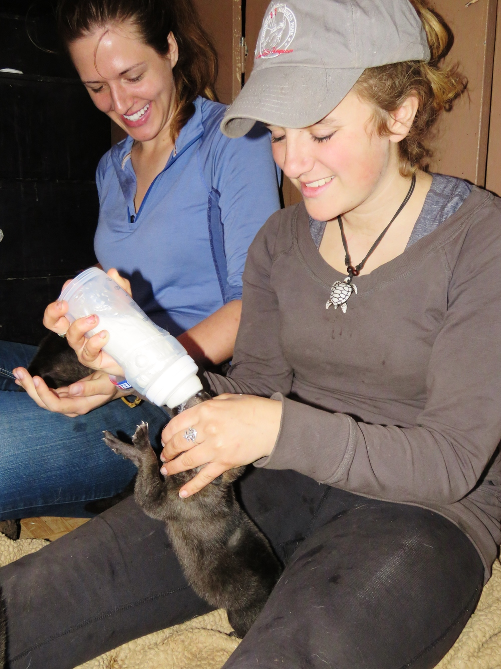 Puppy nannies Megan and Maddie help bottle feed the pups.