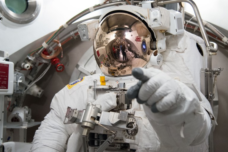 NASA +NEW ORGAN VASCULAR TISSUE CHALLENGE