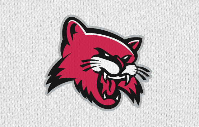 NBA-Style Sports Logo Wildcats