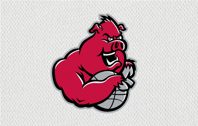 NBA-Style Sports Logo Ball Hogs