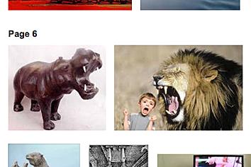 *FOLIO Hippo Boy lion fc 13sharp.png