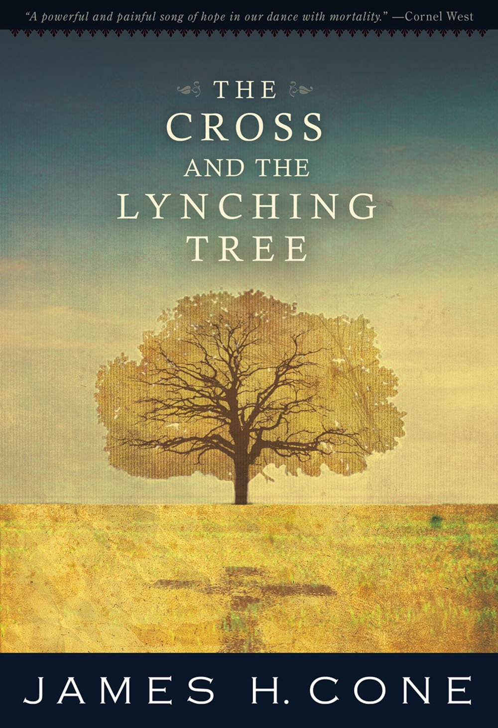 For Finding Christ in America. - This book revolutionized my understanding of Christ and the US church. Growing up, I always heard that Jesus died for my sins because I'm a sinner. I also always grew up white (#obvi).But what if Christ didn't just die for our sins but also for our suffering? What if the cross stands in solidarity with those who suffer? What if the greatest example of Christ on the cross in American history is the person of color hung on a southern tree? What are white people missing (and how are we sinning) by refusing to recognize our tragic past?Orbis Books (2011)