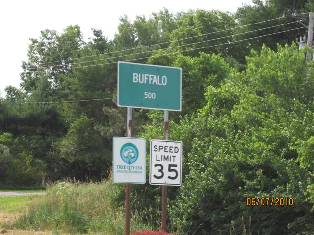 02 Buffalo Detour