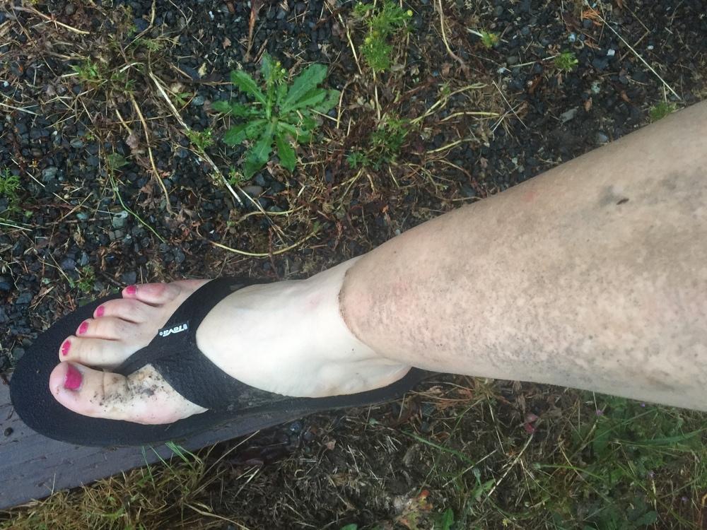 Dirt tan
