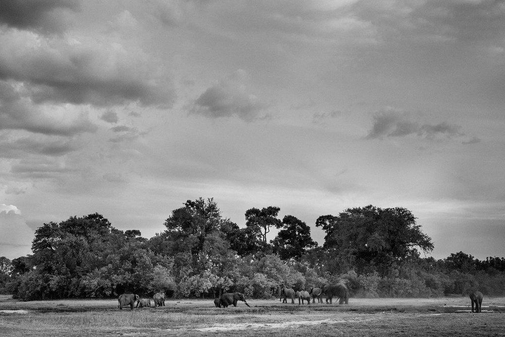 2018JDP_Botswana-43.jpg