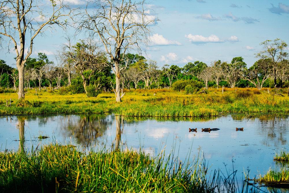 2018JDP_Botswana-48.jpg