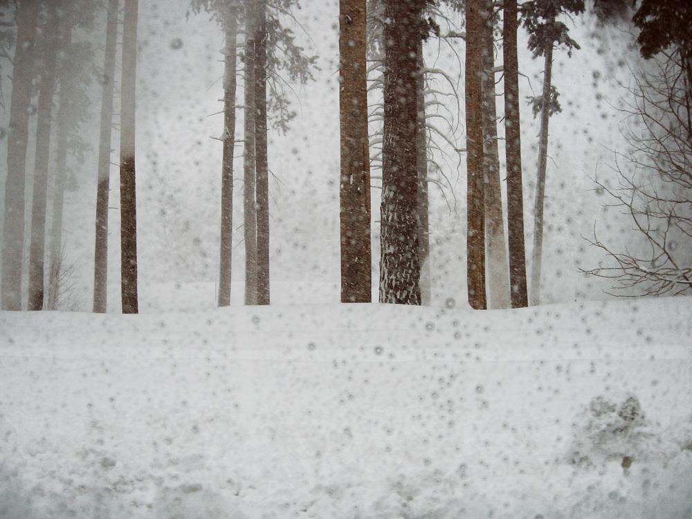 58_RESS_CR_Snow_2.jpg