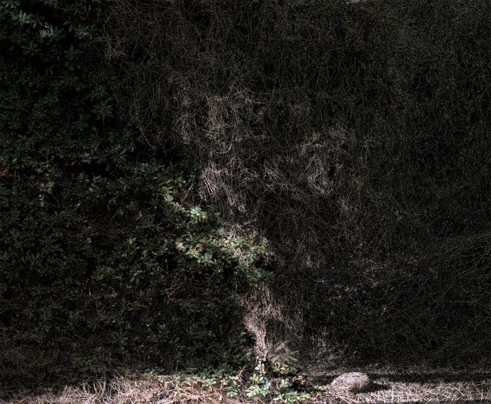 Massif_Tamborello_Gallery2_039.jpg