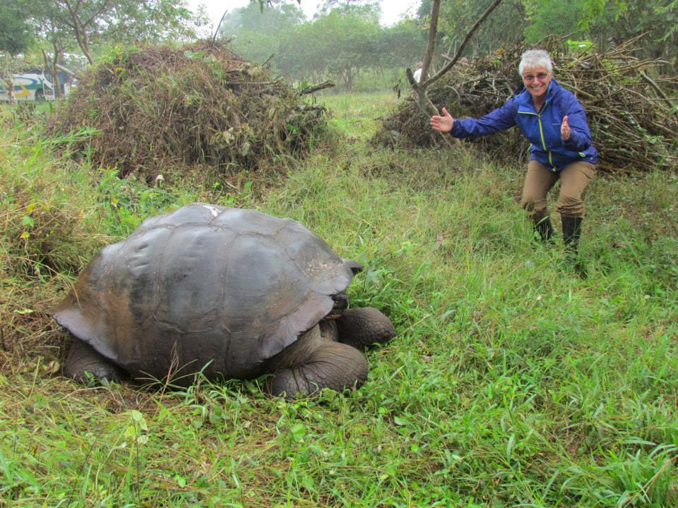 Carol, ITMI Alumni 2012 with a giant turtle in the Galapagos Islands