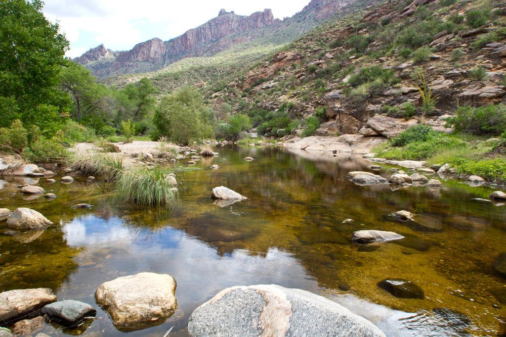 Sabino-Creek-01.jpg