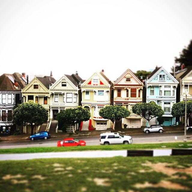 #itmiclass325 #paintedladies #sanfrancisco #itallstartedwithitmi @itmitourtraining #itmi #itmiday3 #becomeatourguidebecause #findyourjoy #travelliverepeat #kickthecubicle