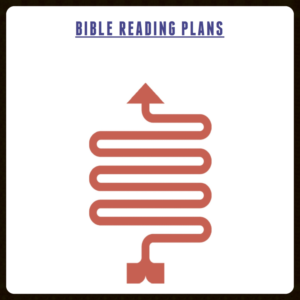 Click here to download a FREE PDF of some suggested Bible reading plans.