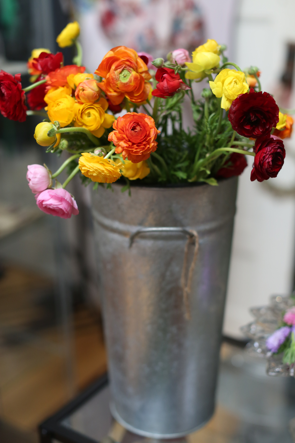Flowers in buckets 2.jpg