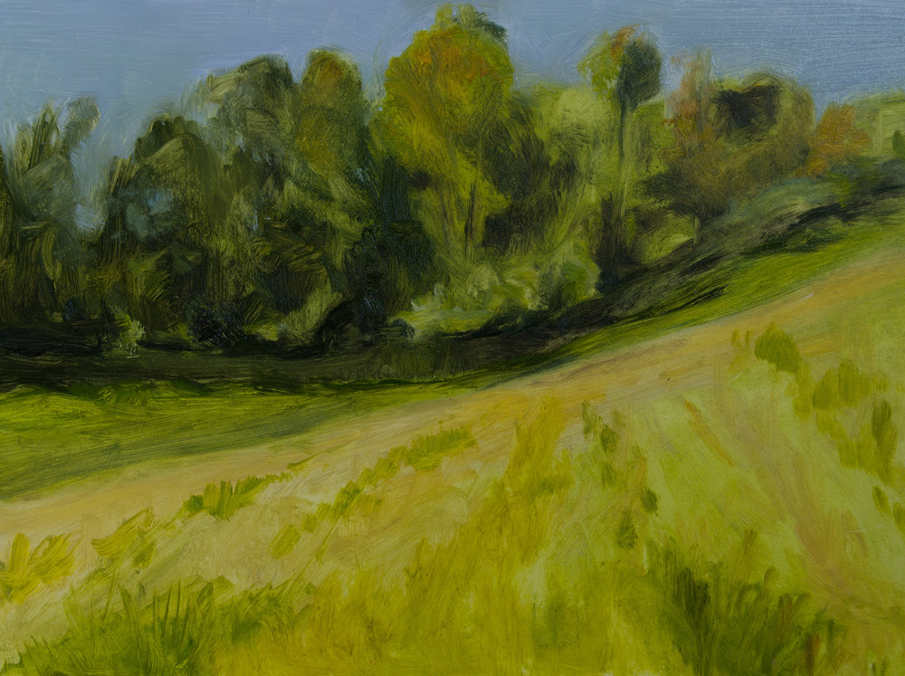 """Sunlit Slope"" oil on board, 9x12"" October 2015"
