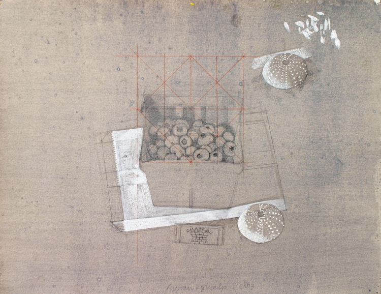 Study for Blueberries wih Wax Paper Bag, Cork and Shell 2003 graphite/egg tempera on hand-toned paper 10 x 12 3/4""