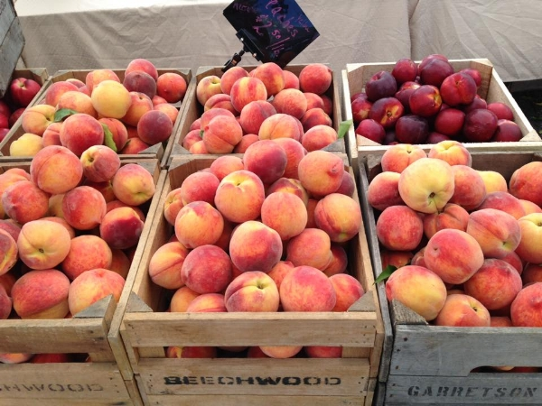 "Peaches at the farmer's market.  They are saying: ""Paint us!  Paint us!!"""