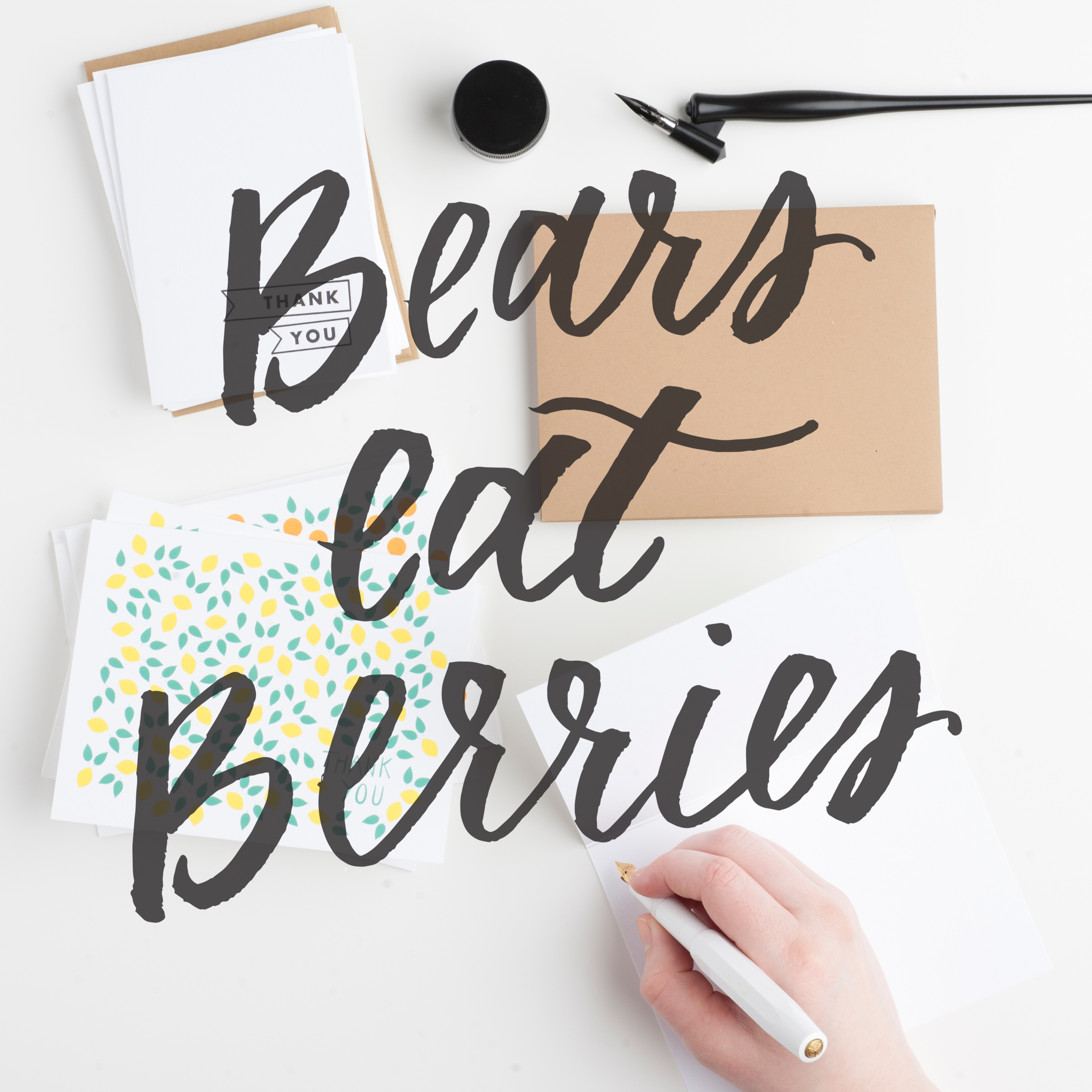BEARS EAT BERRIES | coloregrace