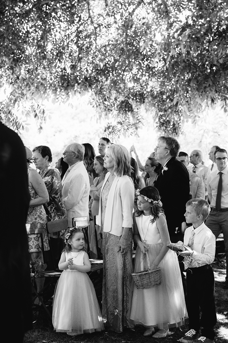 triple-s-ranch-wedding-calistoga-california-abi-q-photography-_0157.jpg