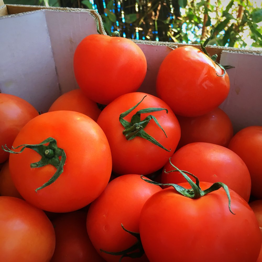 Local Tomatoes 2.JPG