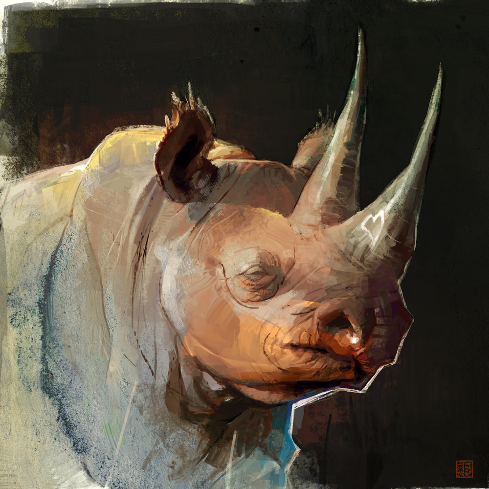 Expedition Art_Rhino