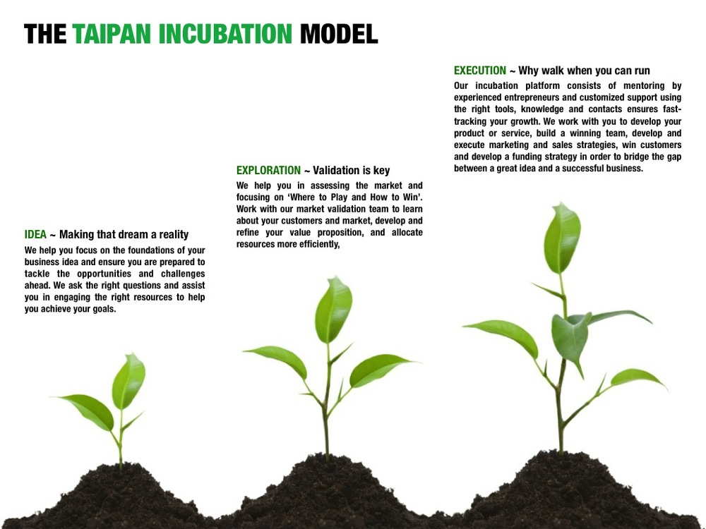 Click to expand Taipan Incubation Model