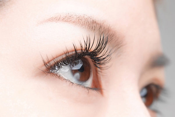 False Eyelashes (Single Wear)  -