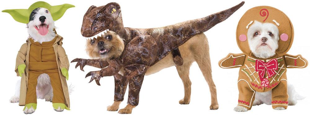 DoggyWood-3.jpg