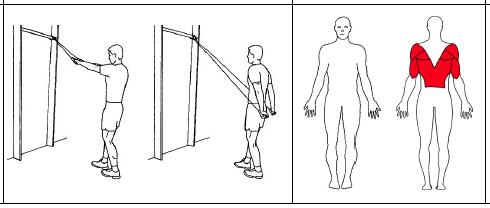 Fest strikken høyt oppe i ribbeveggen. Stå med et håndtak i hver hånd og med ansiktet mot ribbeveggen. Hold armene strake ut fra kroppen og trekk armene bakover. Slipp langsomt tilbake.