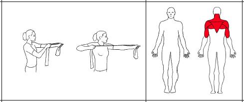 Hold strikken på stram arm foran deg (som om det skulle være en pil og bue). Stram strikken ved at du fører armen bakover samtidig som du dreier lett i overkroppen, til albuen peker rett bakover. Hold stillingen noen sekunder og slipp langsomt tilbake til utgangsstillingen. Gjenta øvelsen med motsatt arm.