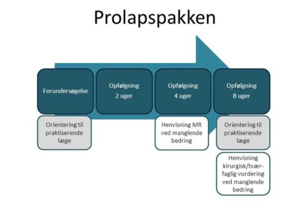 I et Standardisert Prolapsforløp følger kiropraktoren dine symptomer fortløpende, og din fastlege vil bli orientert underveis.