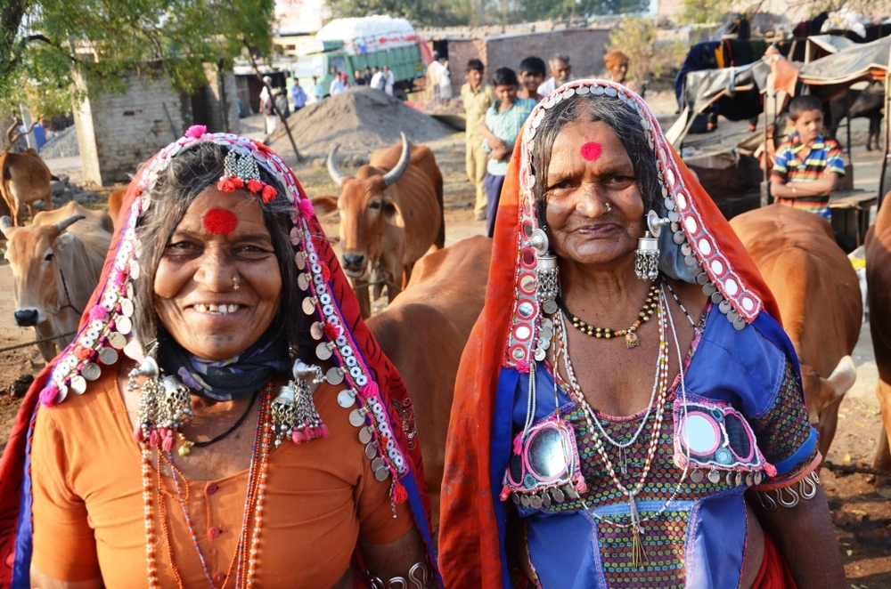 Banjara livestock keepers from Maharashtra - without grazing rights and markets, their future livelihoods are threatened.