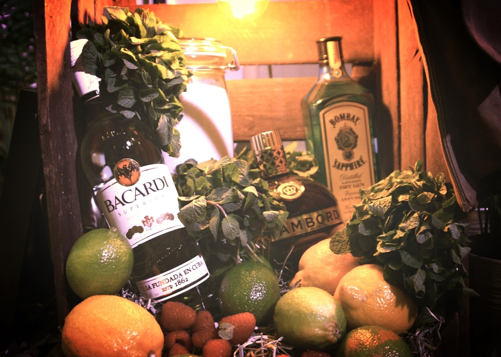 Cocktail BootCamp light box of rum and fruit.jpg
