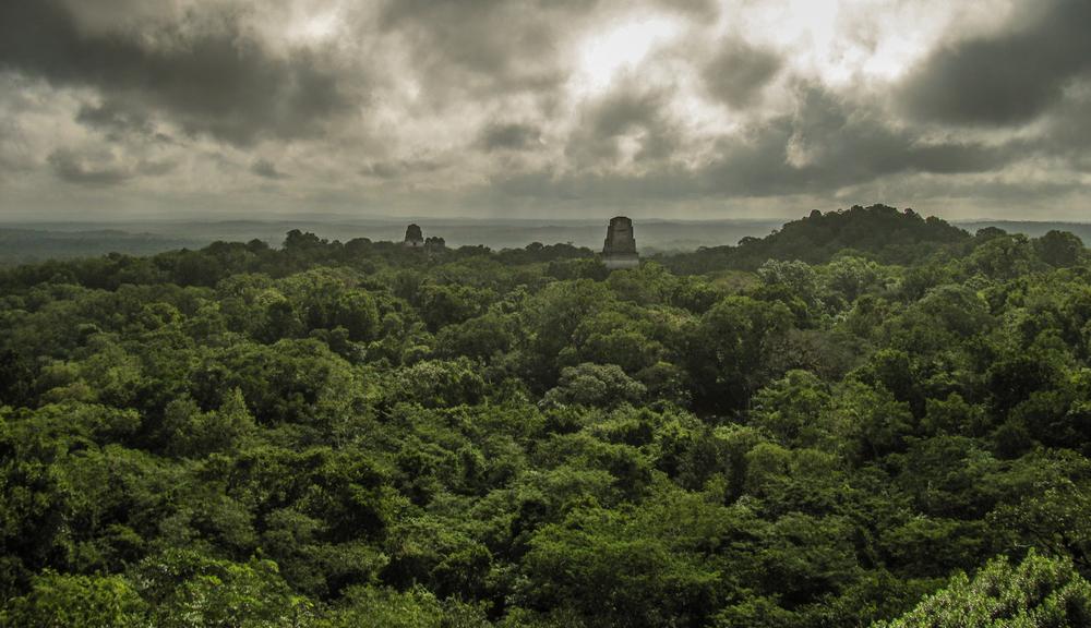 Mayan Tikal, Guatemala