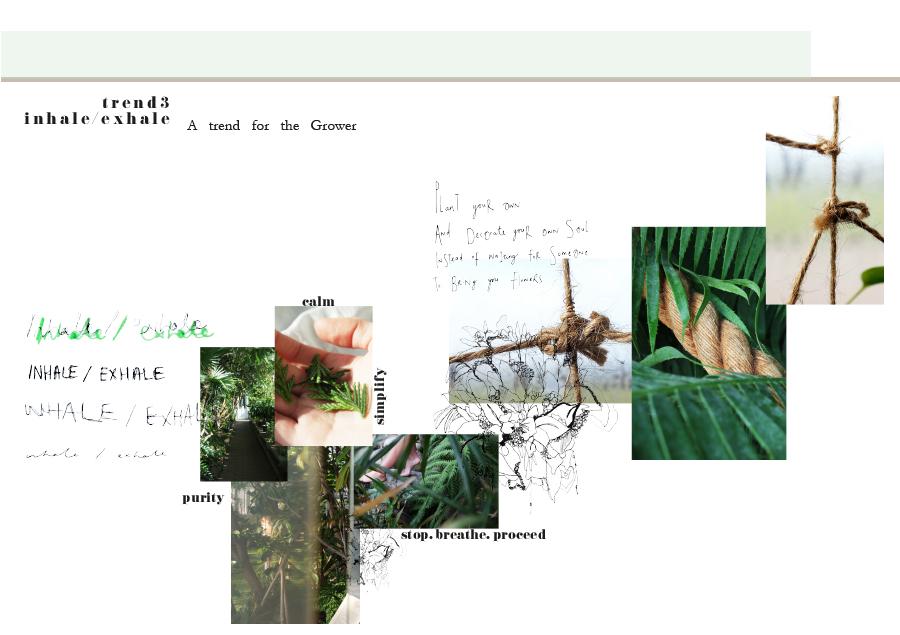 Web Folio Template_0009_Image 9.jpg